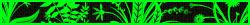 Cinnabar Gym Leader. avatar
