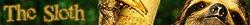 Slothynator avatar